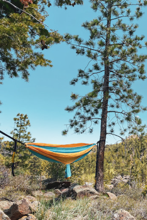 eno hammock at red feather lakes